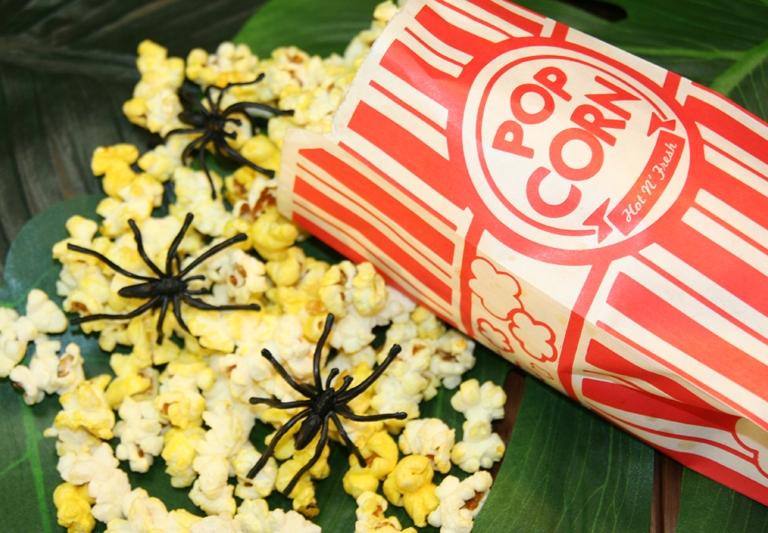 Challenge-Popcorn-photo