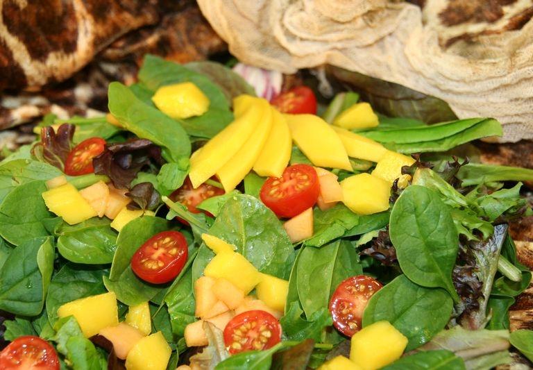 Samoan green salad